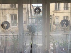 Instalation dans la vitrine des Keyhole Garden (plan de jardin en trou de serrure)